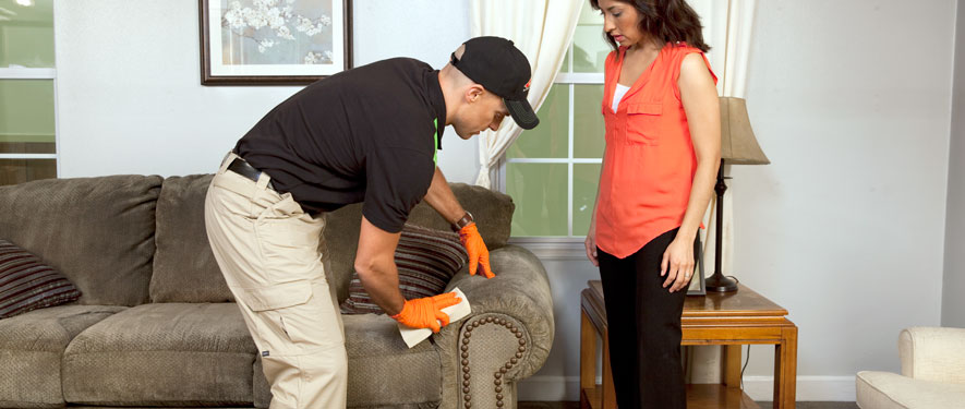 Palm Springs, Ca, CA carpet upholstery cleaning